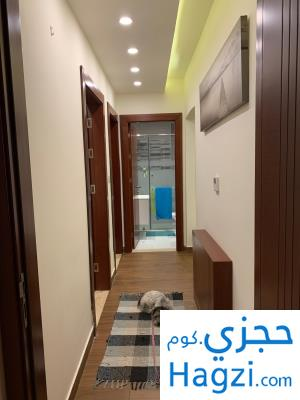 Deluxe Furnished Apartment With Garden Near American Embassy